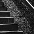 Stairs Phoenix Art Musuem Monochrome by Bob Coates