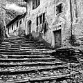 Stairs To Lavertezzo by Timothy Hacker
