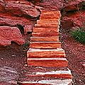 Stairway To Heaven  by David Campbell