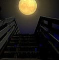 Stairway To Heaven by Laura Ragland