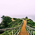 Stairway To Stinson by Nancy Chambers