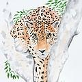 Stalker In The Trees by Joette Snyder