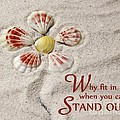 Stand Out by Karin Pinkham