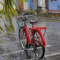 Standing In The Rain Penang by Tony Brown
