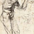 Standing Male Nude by Michelangelo Buonarroti
