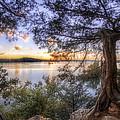 Standing Sentinel - Arkansas - Cadron Settlement Park by Jason Politte
