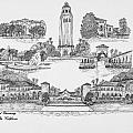 Stanford University by Jessica Bryant