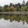Stanley Park In Vancouver Bc Canada by Jit Lim