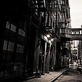 Staple Street - Tribeca - New York City by Vivienne Gucwa