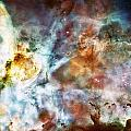 Star Birth In The Carina Nebula  by Jennifer Rondinelli Reilly - Fine Art Photography