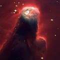 Star Former Cone Nebula by Jennifer Rondinelli Reilly - Fine Art Photography