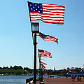 Star Spangled Banner Flags In Baltimore by James Brunker
