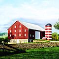 Star Spangled Farm by Bill Cannon