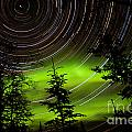Star Trails And Northern Lights In Sky Over Taiga by Stephan Pietzko