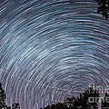 Star Trails by Michael Ver Sprill