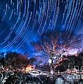 Star Trails On Acid by Robert Loe