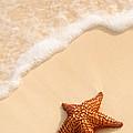 Starfish And Ocean Wave by Elena Elisseeva