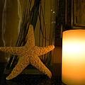 Starfish Candleglow Still Life by Barbie Corbett-Newmin