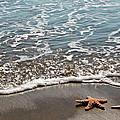 Starfish Catching The Waves by Athena Mckinzie