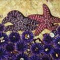 Starfish Dance by Karey and David Photography