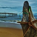Starfish Driftwood And Pier 3 12/20 by Mark Lemmon