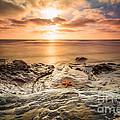 Starfish Sunset by Michael Ver Sprill
