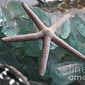Starfish With Sea Glass by The Art of Alice Terrill