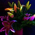 Stargazer Bouquet by Carolyn Repka