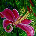 Stargazer Lily by Julie Brugh Riffey