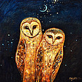 Starlight Owls by Shijun Munns