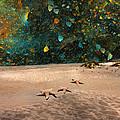 Starry Beach Night by Betsy Knapp