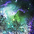 Starry Night by Anastasiya Malakhova