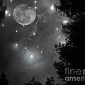 Starry Night by Daniel Taylor