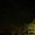 Starry Night by Kobus Van der Merwe