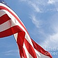 Stars And Stripes by Ann Horn