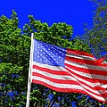 Stars And Stripes by Ed Weidman