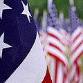 Stars And Stripes by Mike McGlothlen