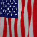 Stars And Stripes by Patti Whitten