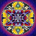 Stars Of Divinity by Derek Gedney