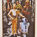 Stars Wars Autographed Movie Poster by Donna Wilson