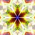 Starseed Rainbow by Derek Gedney