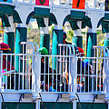 Starting Gate- Del Mar by See My  Photos