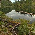 Starvation Lake - British Columbia by Adam Jewell