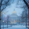 State House Holiday by Susan Cole Kelly