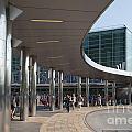 Staten Island Terminal by Carol Ailles