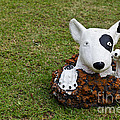 Statue Of A Dog Decorated On The Lawn by Tosporn Preede