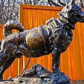Statue Of Balto In Nyc Central Park by Anthony Sacco