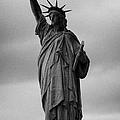 Statue Of Liberty New York City Usa by Joe Fox