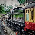 Steam Train 3802 by Adrian Evans