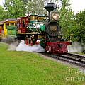 Steam Train by Joy Hardee